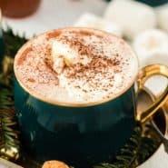 Hot cocoa in a dark green mug.